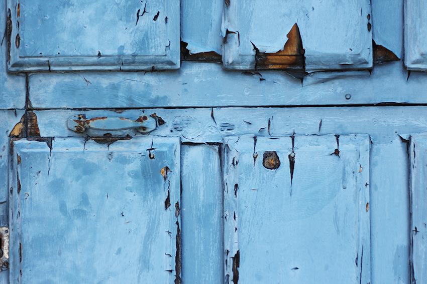 gata puerta azul detalle
