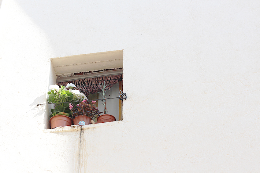 ventana blanca