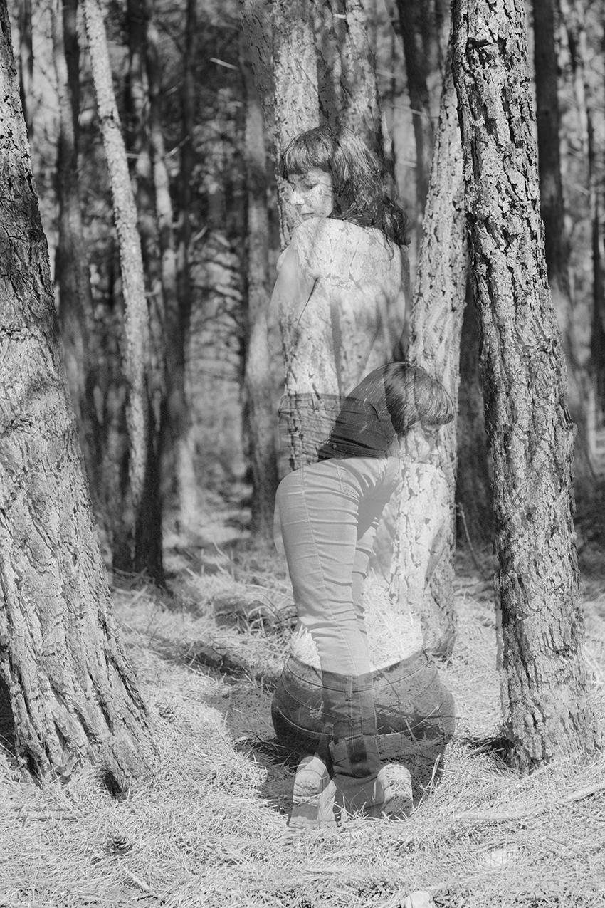 bosque desnudo
