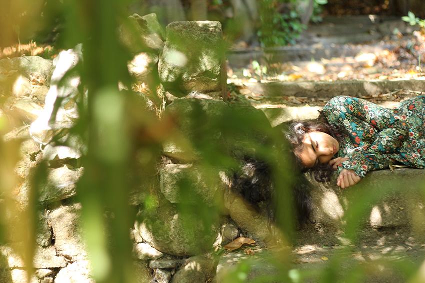gata jardín leonor