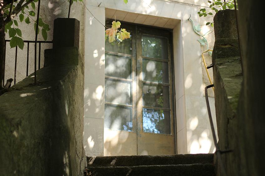 gata jardín resplandor puerta