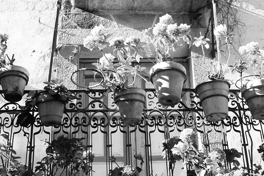 hoyos balcon hortensias pequeño