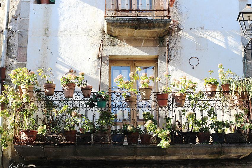 hoyos balcon hortensias
