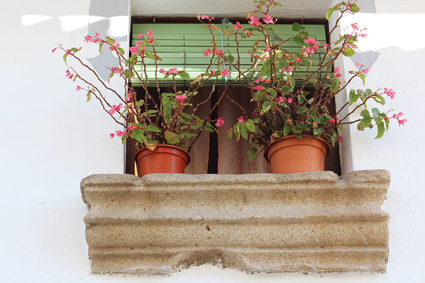 hoyos ventana macetas fachada blanca
