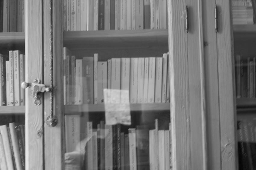 sara libreria