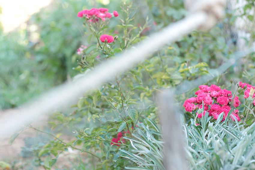 villasbuenas flores