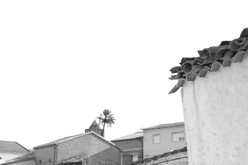 villasbuenas tejados bn