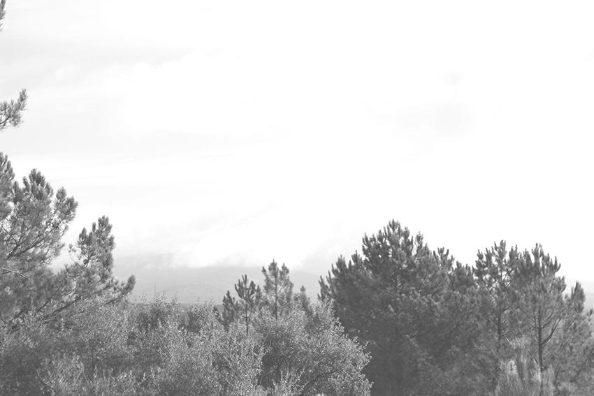 hoyos huertas paisaje