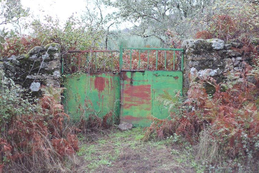 hoyos huertas puerta verde