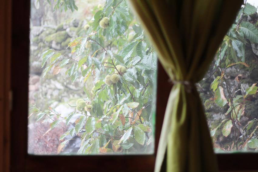 hoyos julia a traves de la ventana