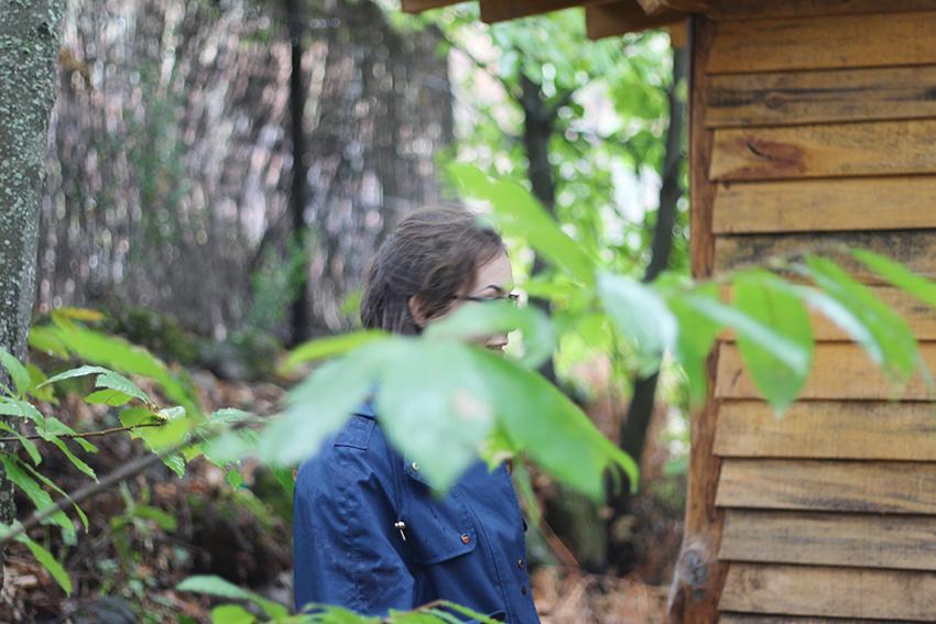 hoyos julia patricia entre hojas