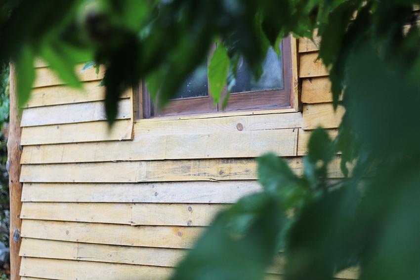 hoyos julia ventana lateral