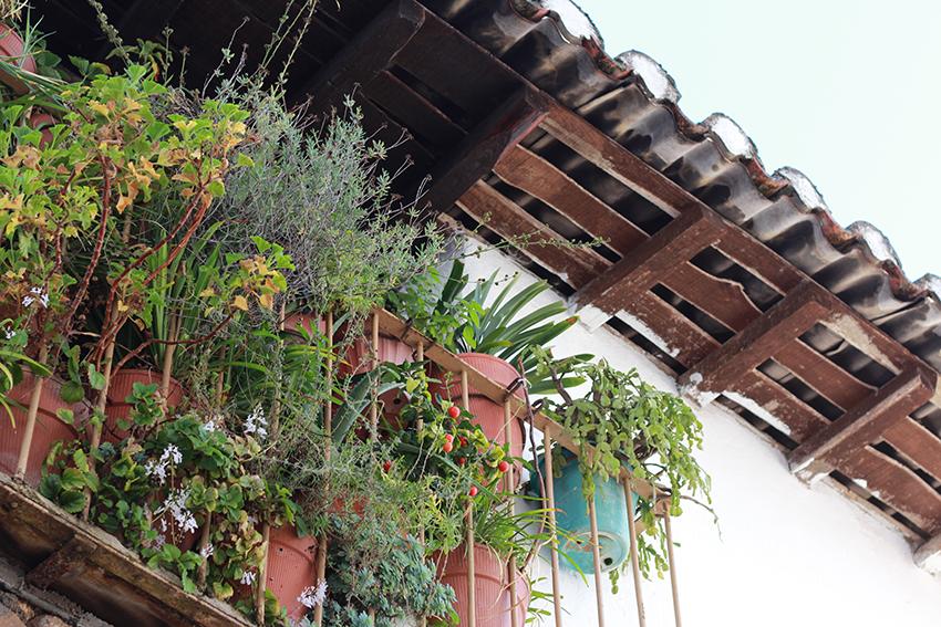 cilleros balcon flores