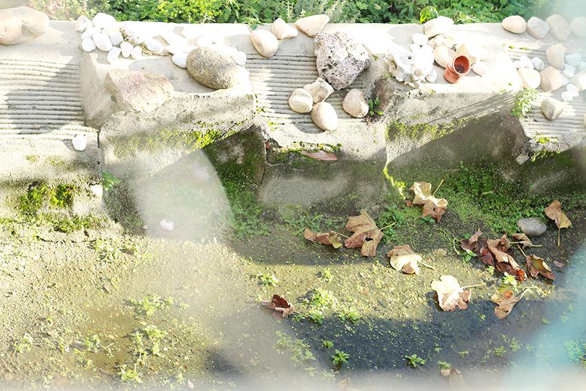 cilleros estanque pica