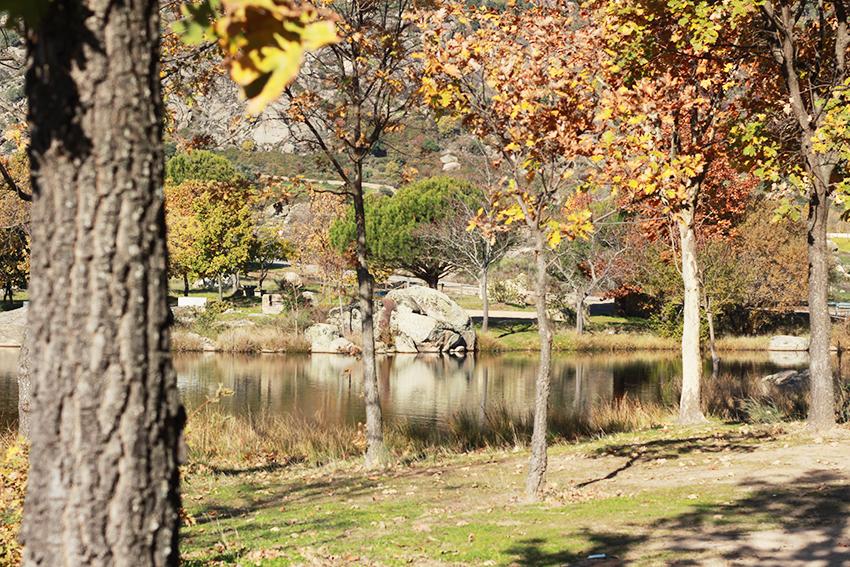 cilleros paraisos belen estanque arboles