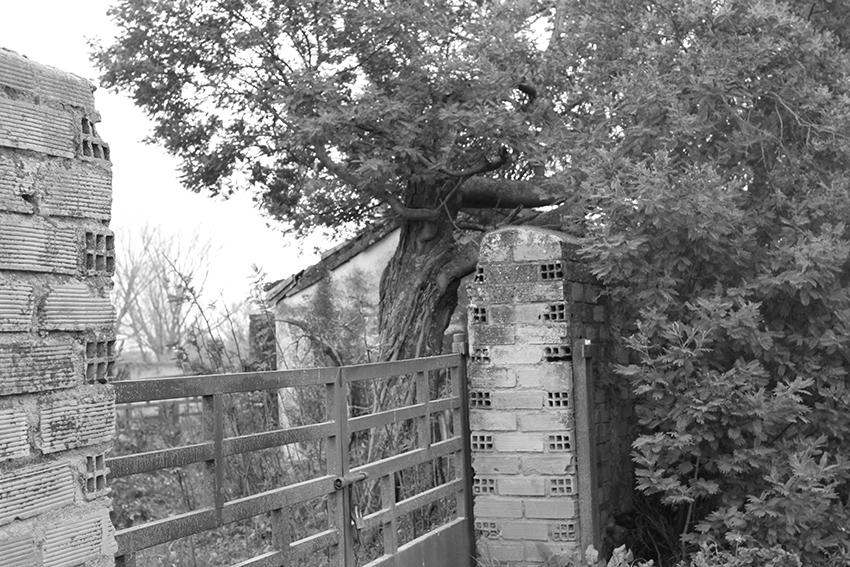 moraleja senderos puente valla casa mimosa