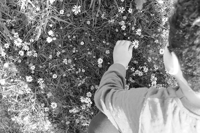 vegaviana charca matias flores bn