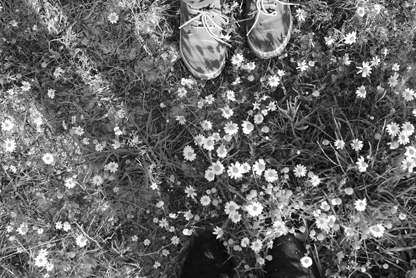 vegaviana charca zapatos