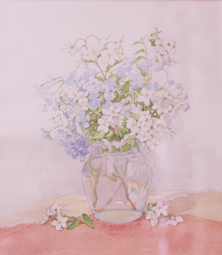 paraisos isabel flores pequeñas