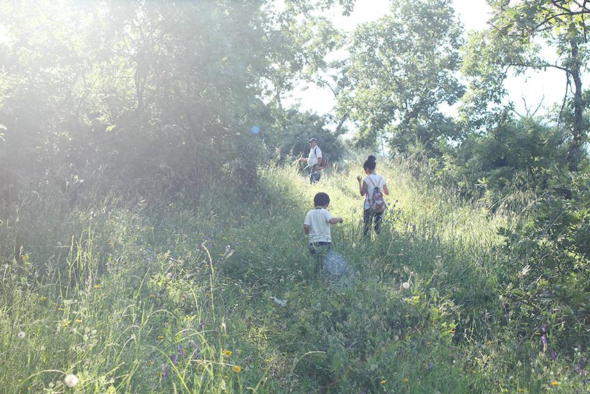 VILLAMIEL PARAISOS MINA 33