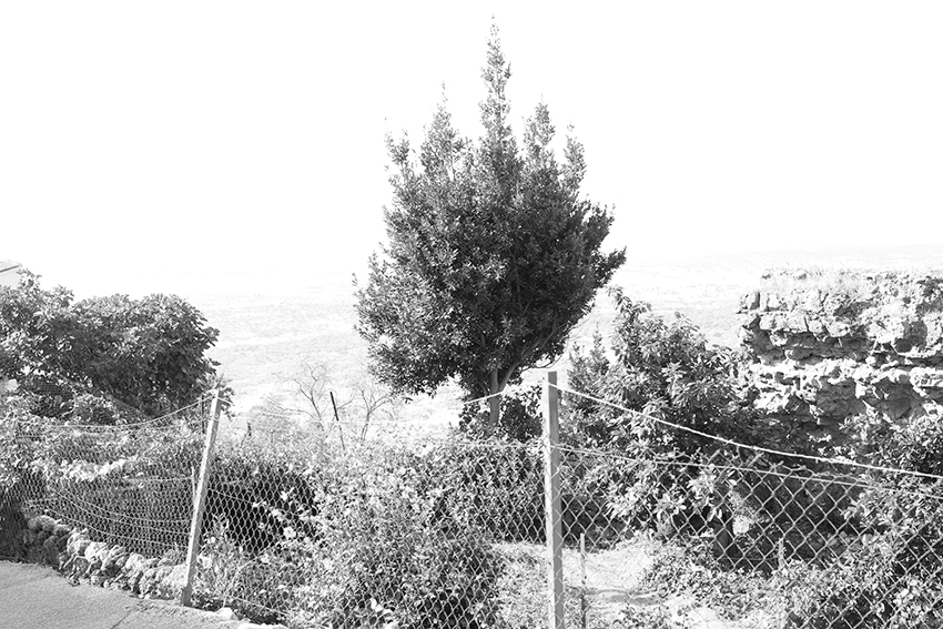 santibanez-evocadoras-52