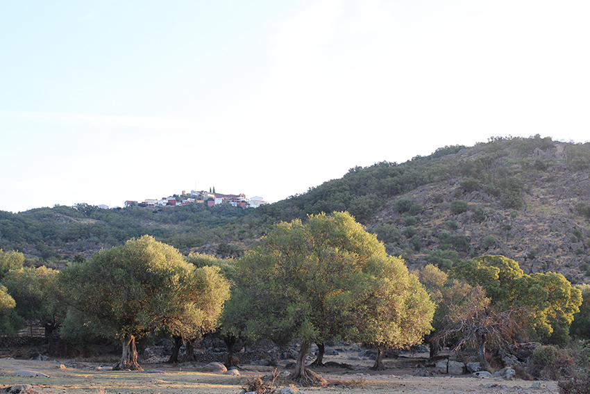santibanez-pajares-32